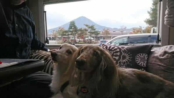 車の窓から富士山