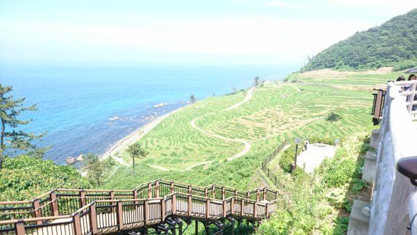白米千枚田へ降りていく階段