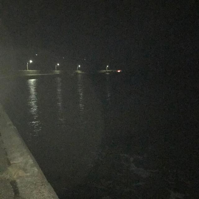 【オススメ】冬の荒れている時はシーバスは漁港を狙ってみよう