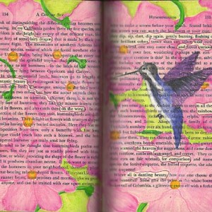 Altered Books Teen