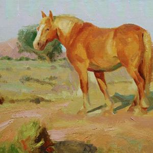 Drawing and Paiting the horse_Michael Calles