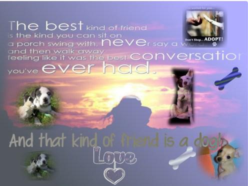 dogs best friends