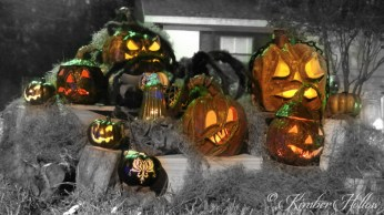 The residents of Kimber Hollow's Pumpkin Patch