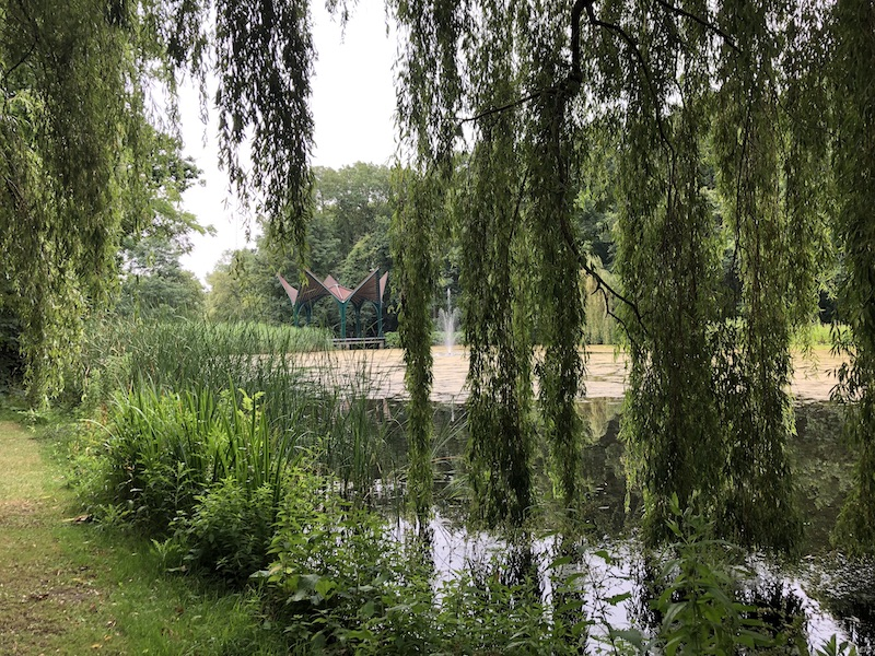 Read more about the article Forest Bathing in Leidse Hout Park