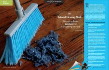 Lifestyle Content Writer Article on National Cleaning Week