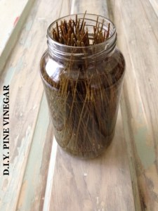mason jar containing homemade pine cleaner