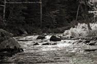 river, bristol, new hampshire, summer, water, landscape, trees, rocks, stones, plants, Kimberly J Tilley