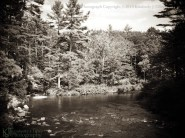 river, trees, landscape, summer, new hampshire, Kimberly J Tilley