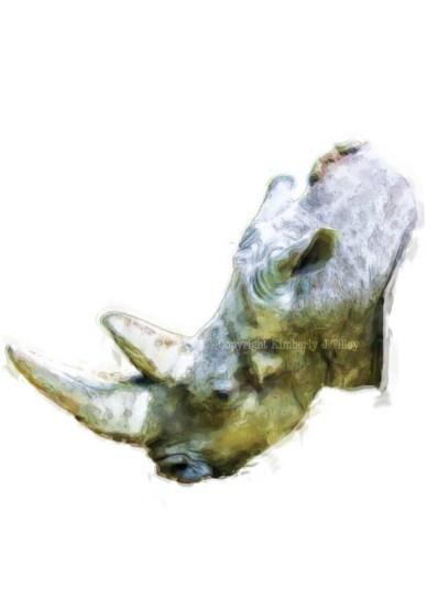 wp-rhino_painting_2016_kimberlyjtilley