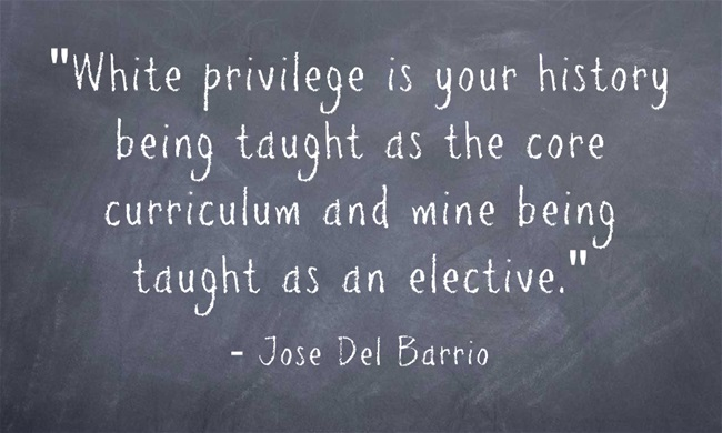 """White privilege is your history being taught as the core curriculum and mine being taught as an elective."