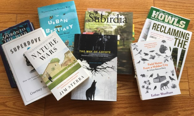 Wednesday Wordcraft: The Urban Wild