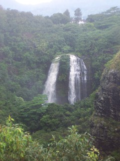 A waterfall that appears as two, surrounded by greenery with mountains in the background.