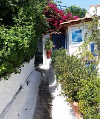 A narrow path with a white wall on one side and hedges on the other. A house with a blue door is off to the right