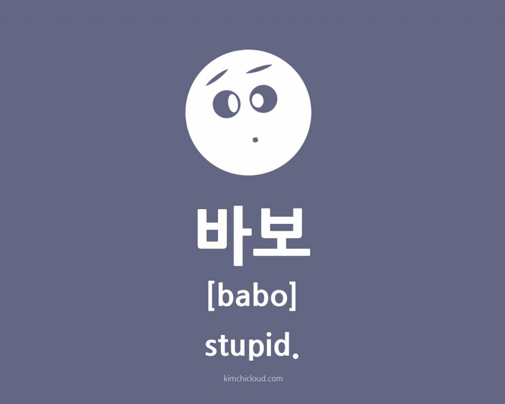 How Do You Say Stupid Spanish