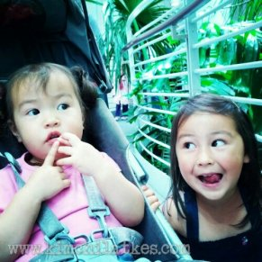 Silly big sisters waiting for butterflies in the rain forest.