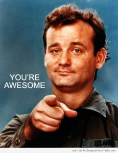 bill-murray-youre-awesome-500x648