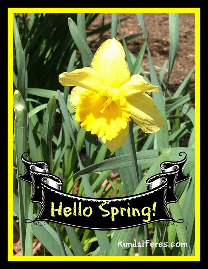 hello spring with text