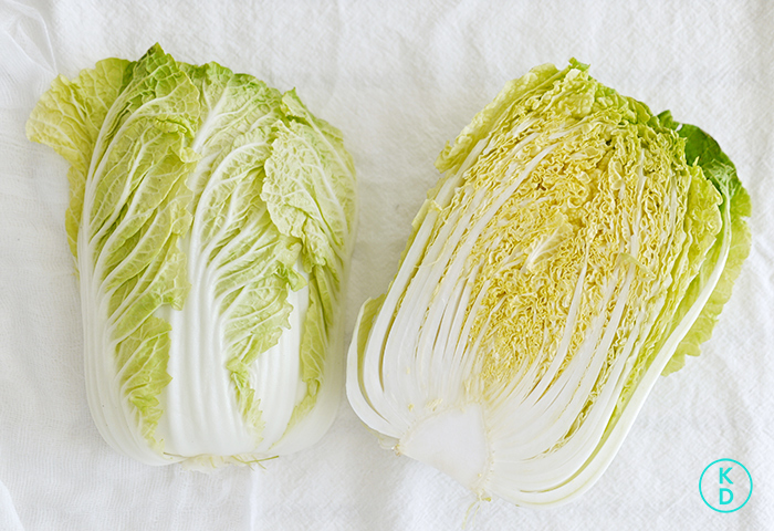 kim-deon-in-Asian-Cabbage-Salad-9