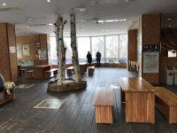 円山動物園で持ち込みのお弁当が食べられる場所!セブンイレブンもあるよ!
