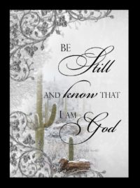 be still and know that I am God snowy cactus scene card