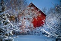 winter-warmth-jeff-klingler