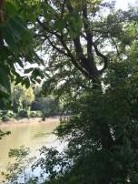 Riverbank Meremec