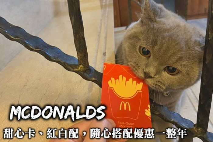 2021 麥當勞甜心卡、1+1=50元紅白配、點點卡,三大優惠麥當勞美食飲料隨你搭配!