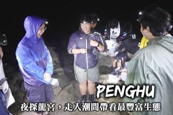 澎湖-夜探龍宮潮間帶體驗,走入夜晚的潮間帶,探訪最豐富的澎湖海洋生態!