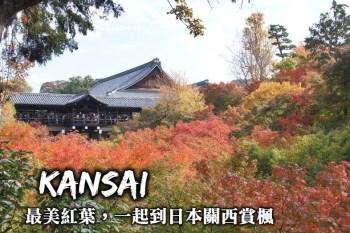 關西賞楓行程規劃-大阪、京都、神戶、奈良紅葉名所推薦,6天關西賞楓這樣玩!