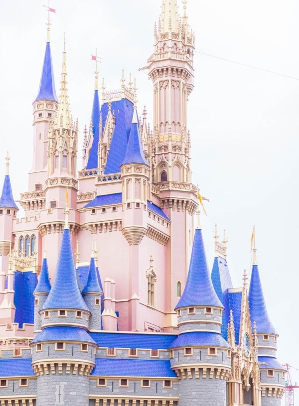 Annual Passholder Options for Disney World
