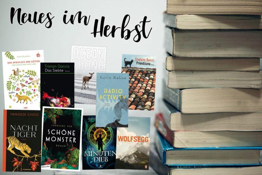 Vorschau-Auslese Herbst 2019, Teil 4