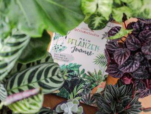 Julia Ruda (@friederikefox): Mein Pflanzen-Journal