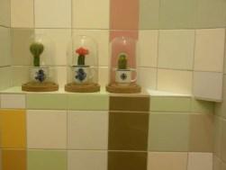 Cactussen in het hotel.