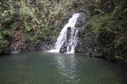 Waterval in Parque Nacional Alejandro de Humboldt