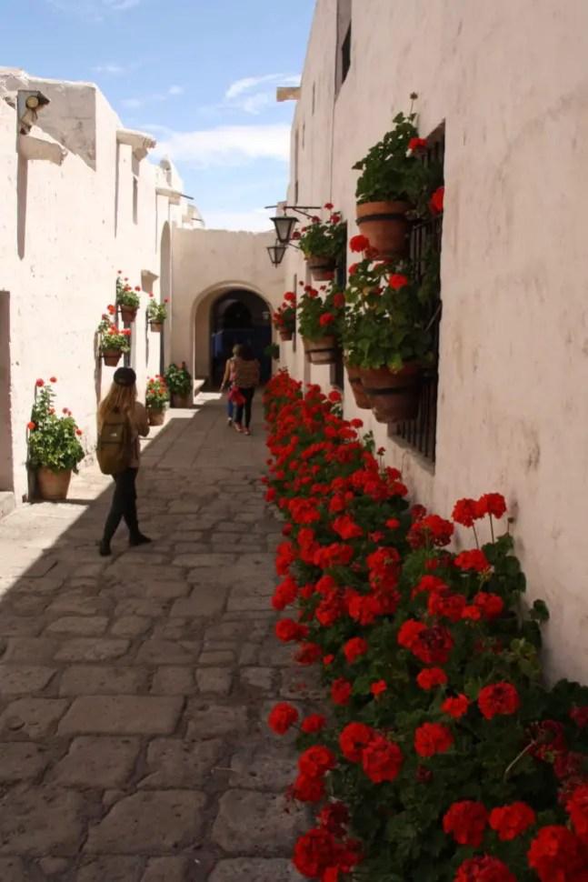 De bloemen en muren doen bijna Grieks aan in het klooster