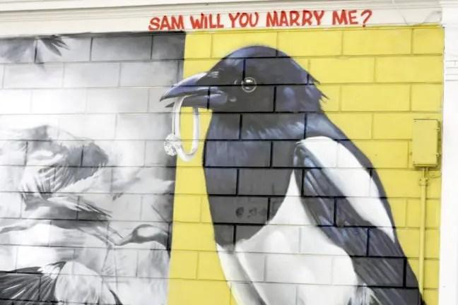 Love Birds: één van de artiesten vroeg via het werk zijn vriendin ten huwelijk.