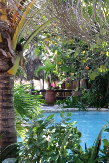 Het mooie zwembad van Ramon's Village.