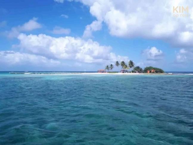 Kleurrijk eiland met palmbomen in de verte.