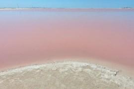 Las Coloradas in Mexico, de roze meren.