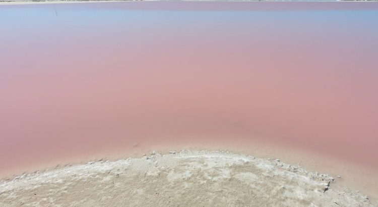 Las Coloradas in Mexico, de roze meren.