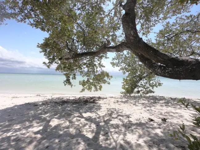 Op Punta Cocos kun je ook lekker in de schaduw liggen.