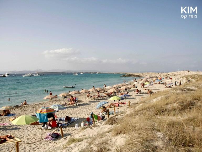 Playa Ses Illetes Formentera: beach with dune area