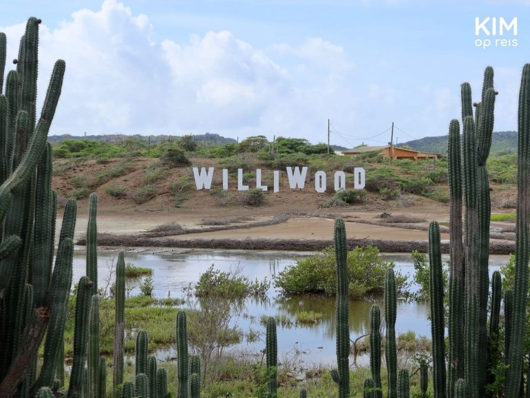 Williwood sign Curaçao: white letters on a hill, similar to the famous Hollywood sign