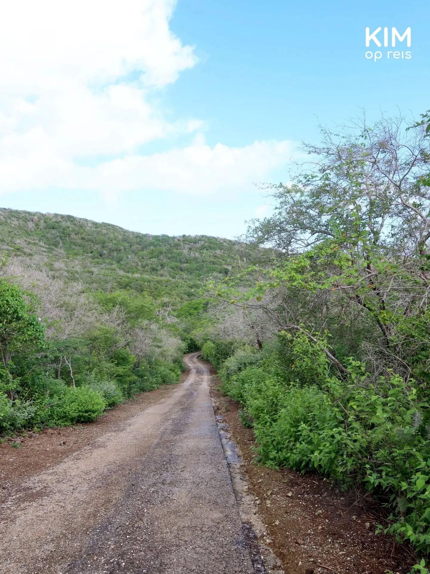 Autoroute Christoffelberg asfalt Curaçao: natte asfaltweg door heuvelachtig landschap