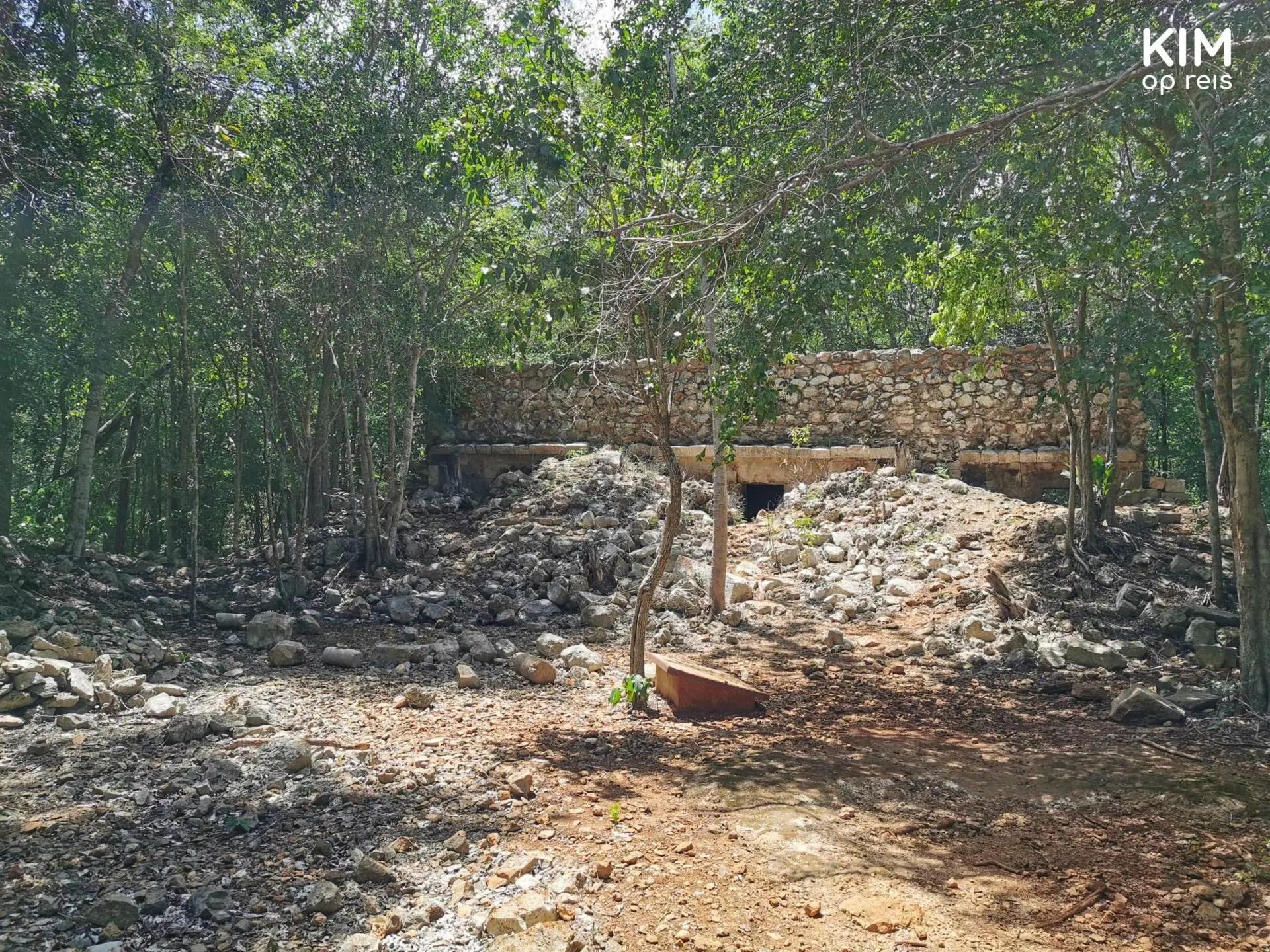 Maya ruine Sayil: sterk vervallen ruïne tussen de bomen