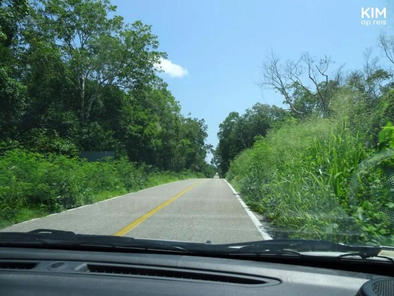 Ruta Puuc rijden: autoweg vanuit de auto gezien