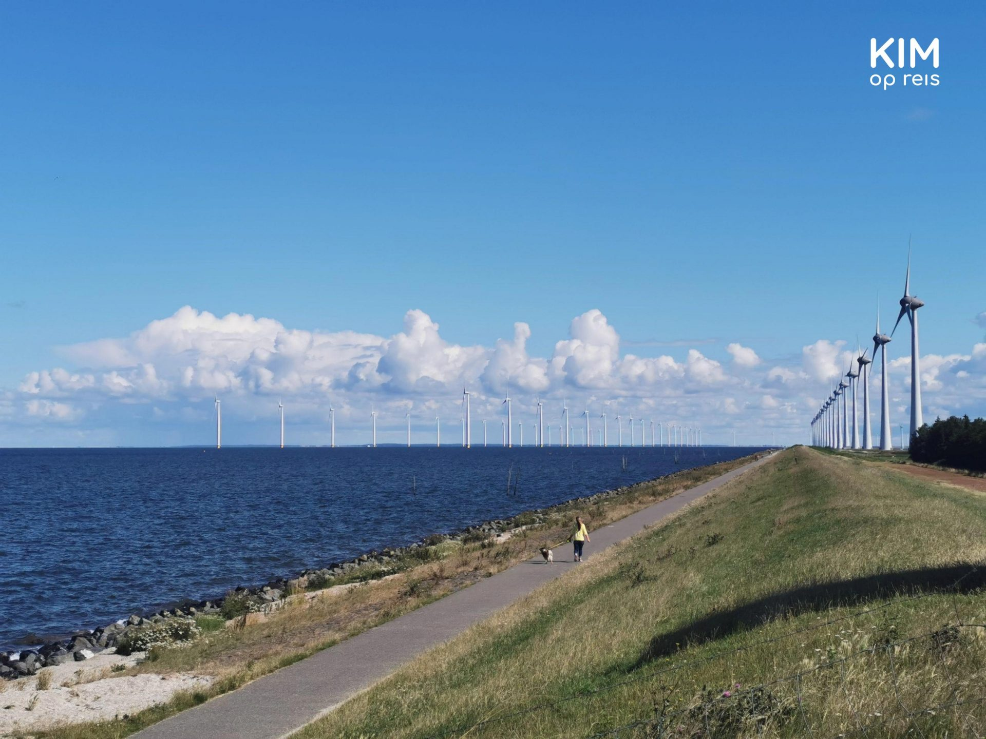 Urk windmills - walking path along the water with double rows of windmills in the distance