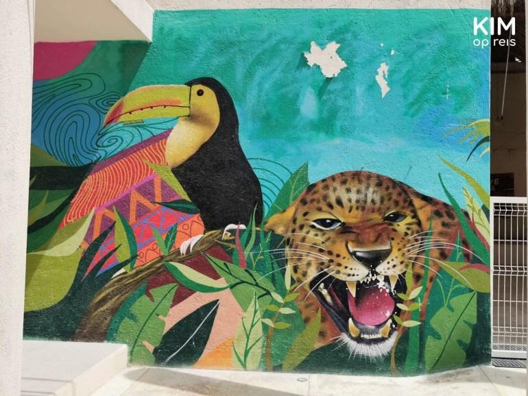 Isla Holbox street art toekan luipaard: muurschildering met een toekan en luipaard