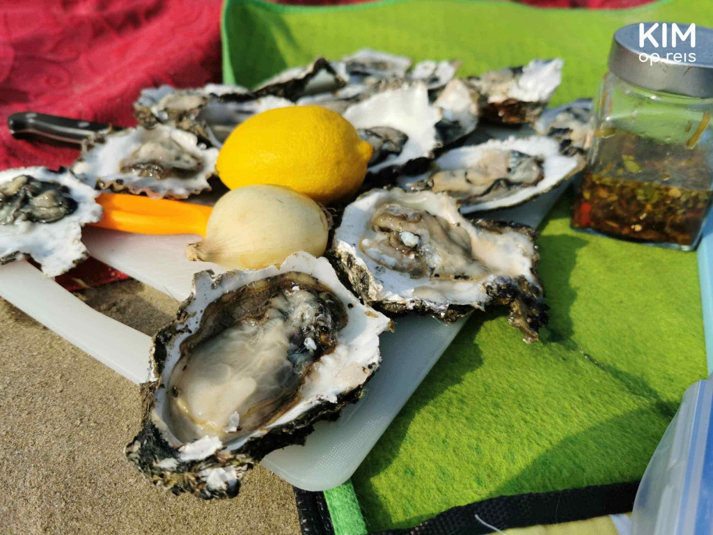 Find oysters Zeeland St Annastrand : cutting board with some opened oysters