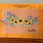 Bloom & Grow Card Samples